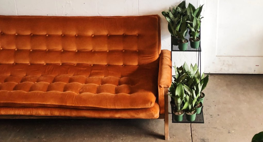 Burnt orange vintage couch with plants on a shelf
