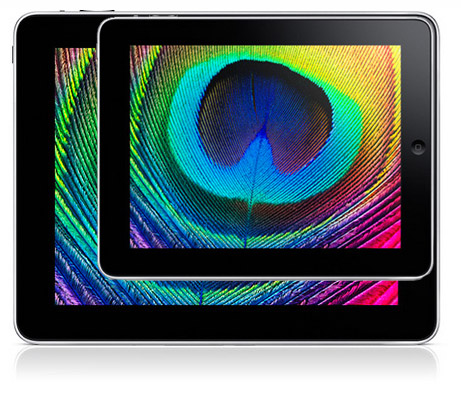 iPad mockup of a 7-inch version against the standard 10.7-inch