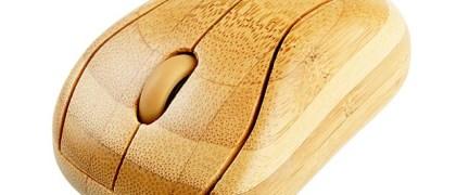 111222-bamboo3