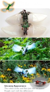 dragonfly-microuav-0 dragonfly-microuav-0