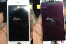 iphone-5c-leak