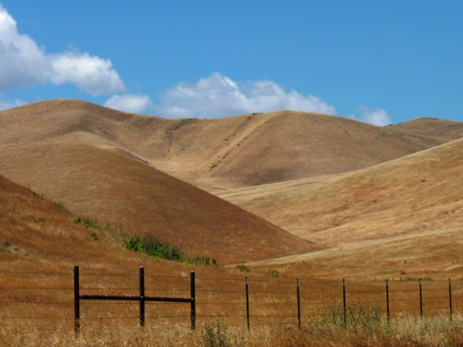 The hills of Patterson, California on May 29, 2011. © Susan Liepa.