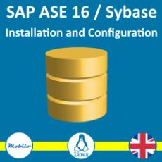 Kurs Sybase 16 / SAP ASE 16 - Instalacja i konfiguracja