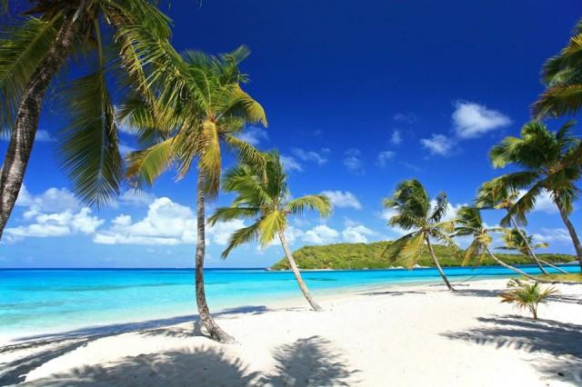 Image result for Tobago, Trinidad and Tobago