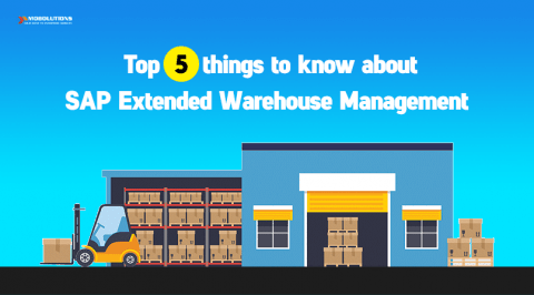 SAP EWM, Extended warehouse management in SAP, SAP extended warehouse management processes functionality and configuration