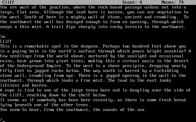 Zork III: The Dungeon Master DOS A remarkable spot in the dungeon - it almost makes you wish the game had graphics.