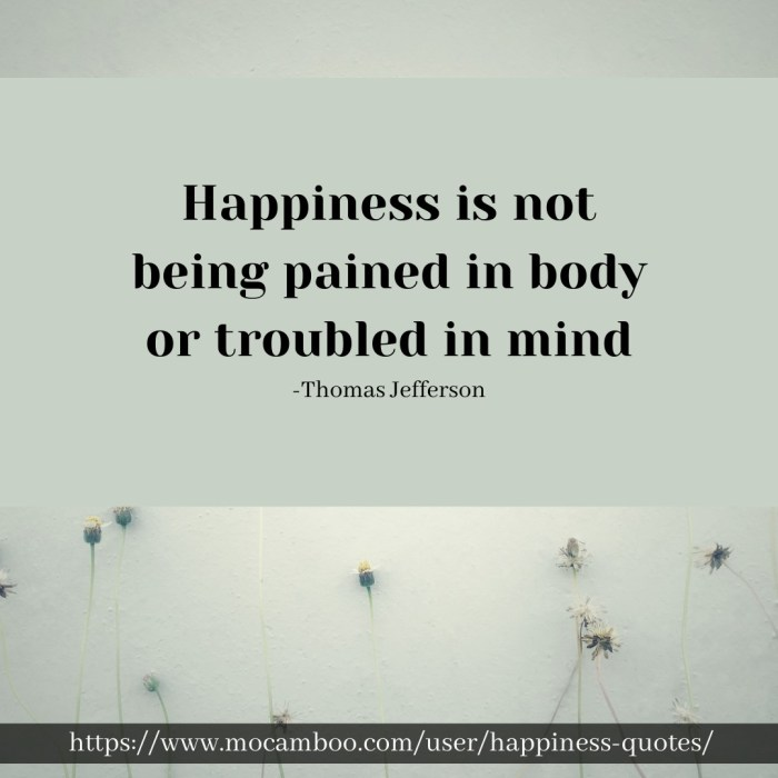 Happiness is not being pained in body or troubled in mind. -Thomas Jefferson