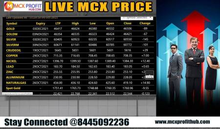 LIVE MCX PRICE NEWS UPDATE BY MCX PROFITHUB OR GET FREE TRIAL CALL @8445092236