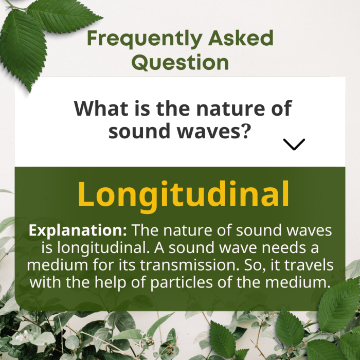What is the nature of sound waves?