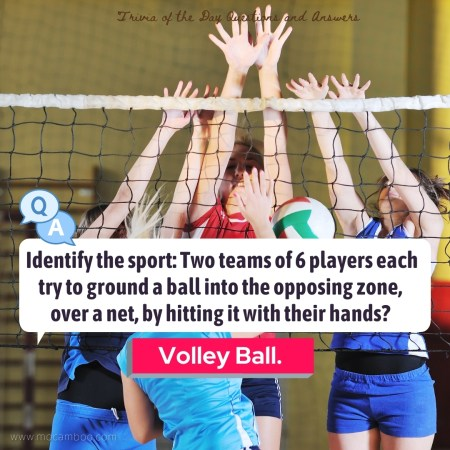 Identify the sport: Two teams of 6 players each try to ground a ball into the opposing zone, ove ...