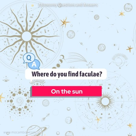 Where do you find faculae?