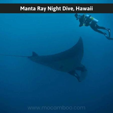 Manta Ray Night Dive, Hawaii