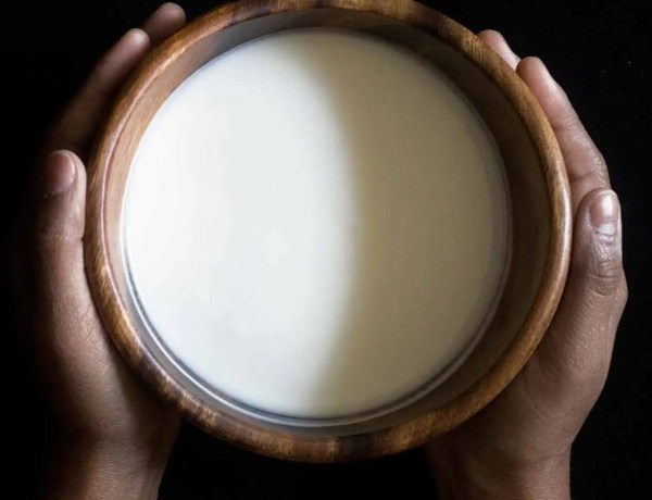 homemade yogurt in wooden bowl with hands surrounding it