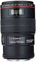 Canon 100 mm lens photo