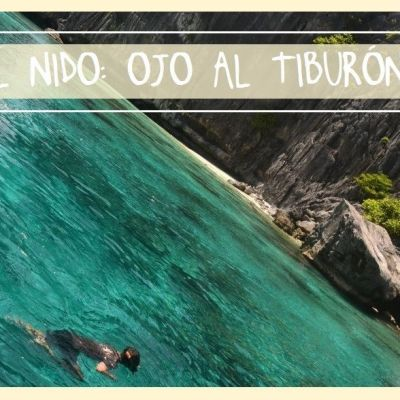 EL NIDO: OJO AL TIBURÓN!!!!