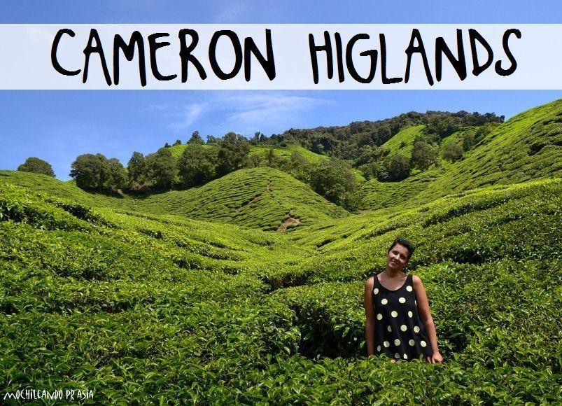 CAMERON-HIGLANDS-MOCHILEANDO-POR-EL-MUNDO-TIERRAS-ALTAS-MALASIA