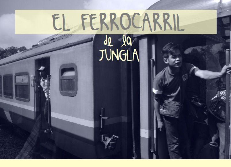 FERROCARRIL-JUNGLA-MALASIA-TREN