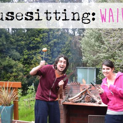 HOUSESITTING-TIME: WAIUKU