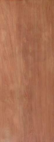 JB Kind Internal Ply Flush Door