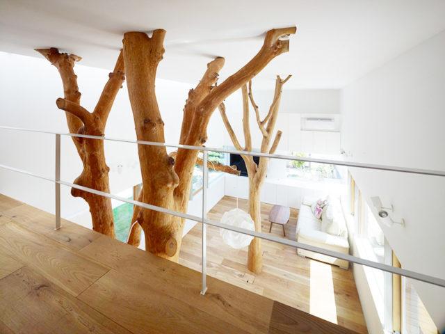 Arredare naturalmente dai tronchi tavoli alla libreria albero