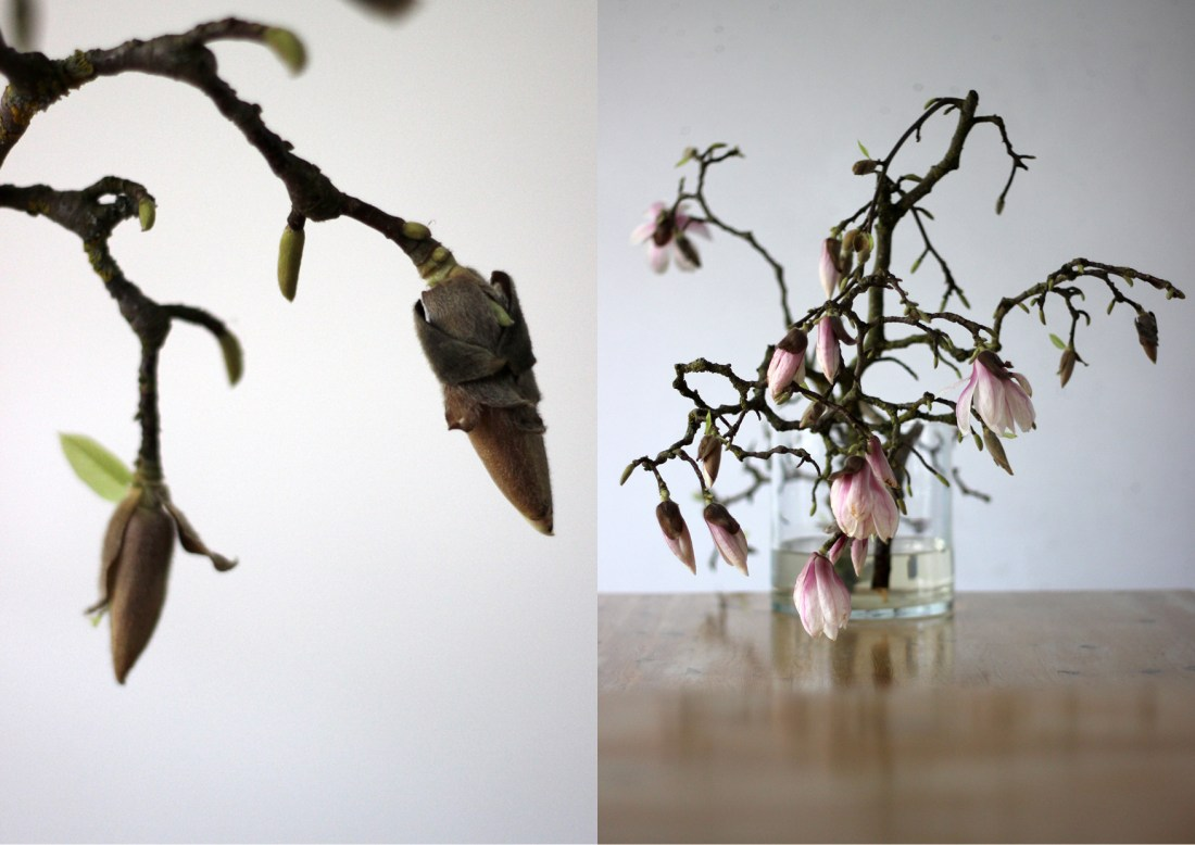 Modarium Magnolia Moodboard 01