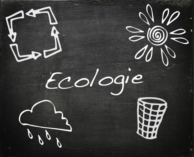 Modarium schoolbord voor ecologie met symbolen