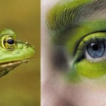 Modarium moodboard Greenery groen PANTONE 15-0343 uitgelicht