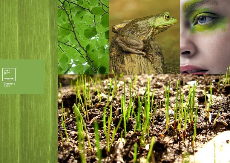 Modarium moodboard Greenery groen PANTONE 15-0343