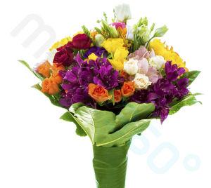 Flori (4)