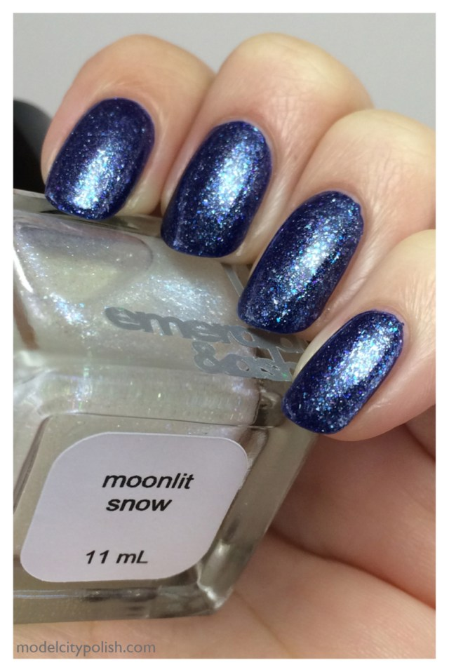 Moonlit Snow 4