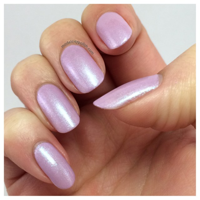 Shrinking Violet 4