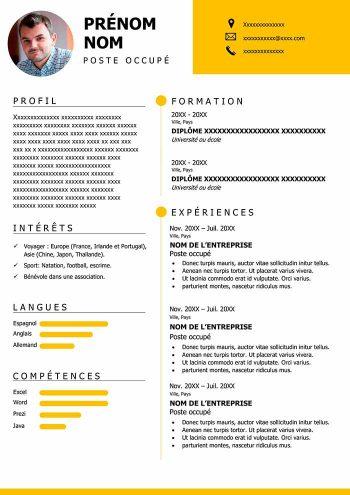 Modele De Cv Gratuit A Imprimer Au Format Word Exemples Cv