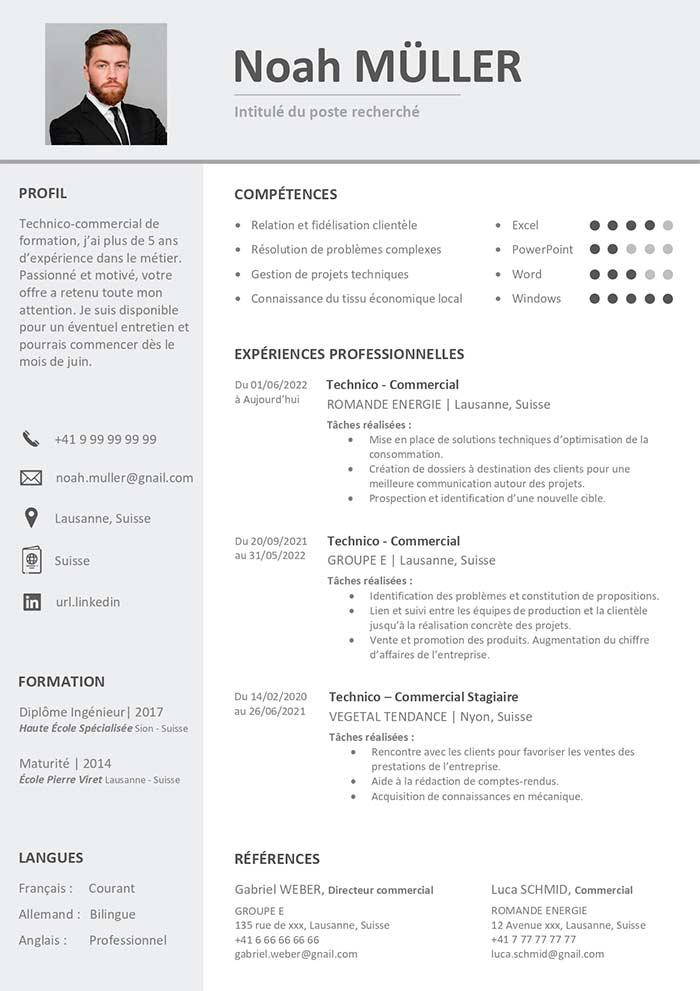 Exemple De Cv Suisse Gratuit A Telecharger Cv Word