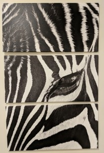 "3-Piece printed canvas; 'Zebra Stare' by Rob Larson. Never used. As shown: 40"" x 63"" Current List: $525. Modele's Price: 195."