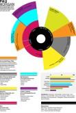 Currículum infográfico 8
