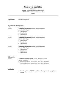 modelo resume estándar español template standard resume english