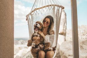 How CBD interacts with the Endocannabinoid System in Pets