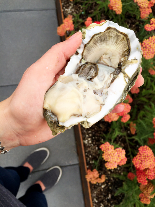 Oyster Shucking Pikes Place Market Seattle