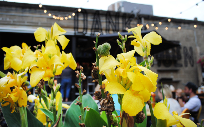 Patio brunch and drinks at Hi Hat Garage in Milwaukee's Brady Street area