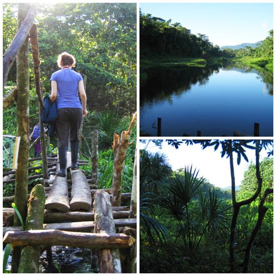 Acupuncture-Volunteering-Rainforest-Clinic-Peru-1