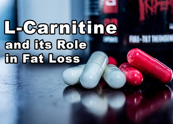 L-Carnitine: Fat Loss, Weight Loss + Energy | Modern Body Clinic