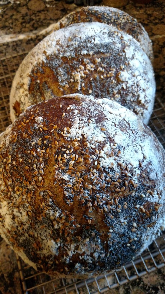 3 seeded boules