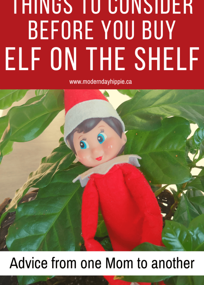 So, you're thinking you want to buy Elf on the Shelf. Before you do give this a quick consideration. It could save your next 5 years.