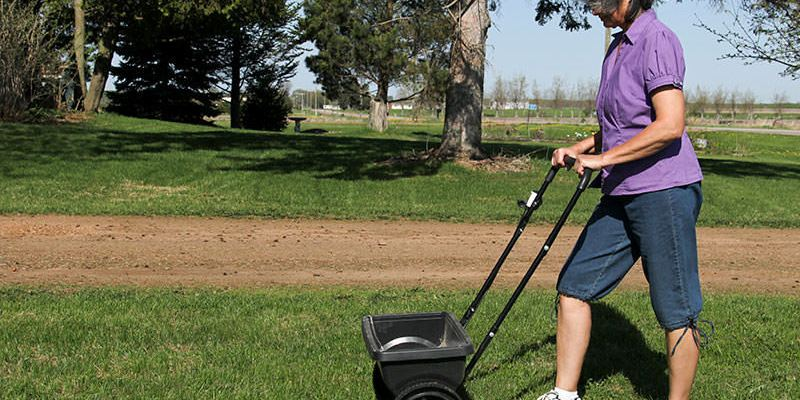 woman fertilizing lawn