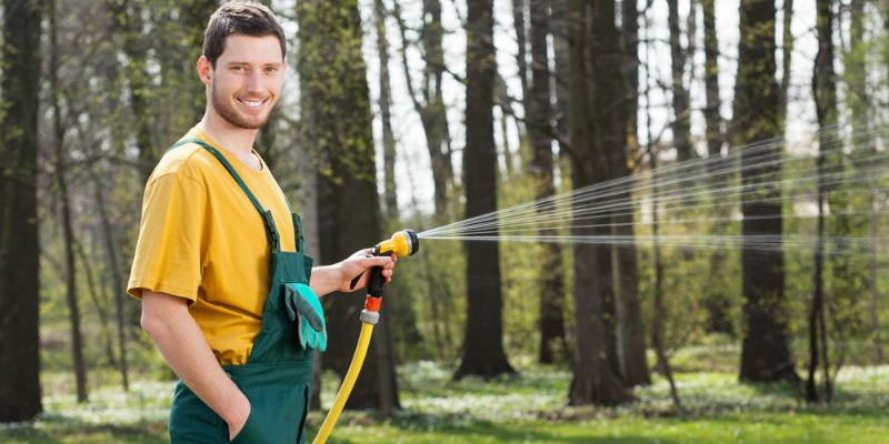Easy Lawn Watering with an Expandable Garden Hose