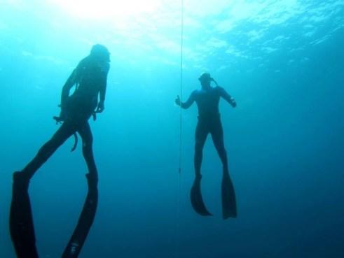 Scuba divers_Mark Mathieson
