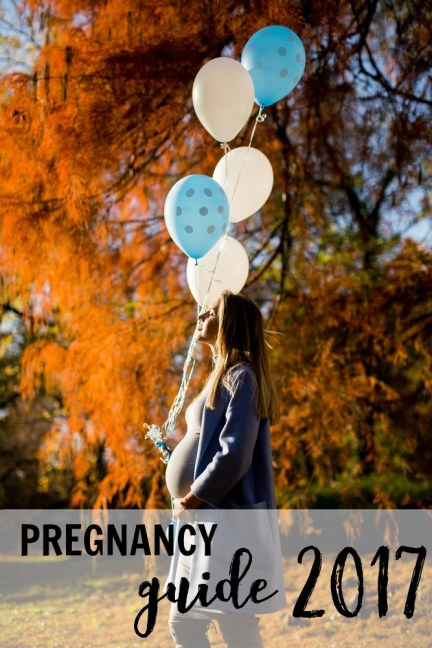 Pregnancy Guide from Modern Mama 2017