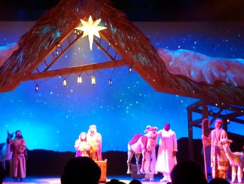 SeaWorld's Christmas Celebration O Wondrous Night Show