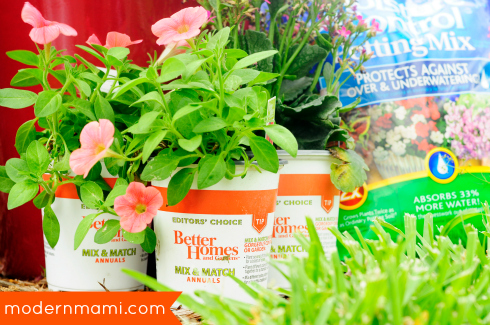 Starting Summer with a Flower Garden of Her Own | modernmami™
