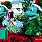 Holidays Around the 'World – Epcot Candlelight Processional And More